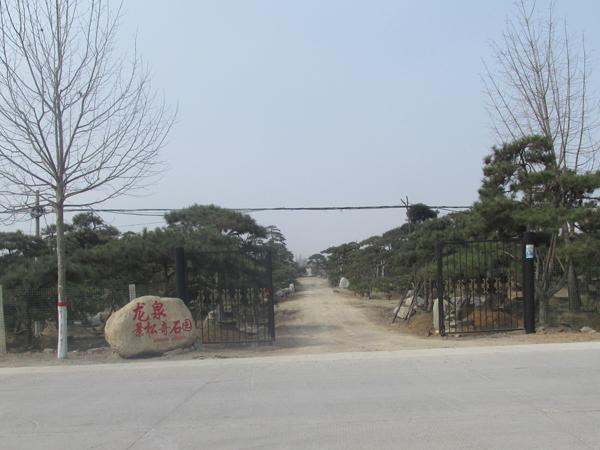龙泉景松奇石园